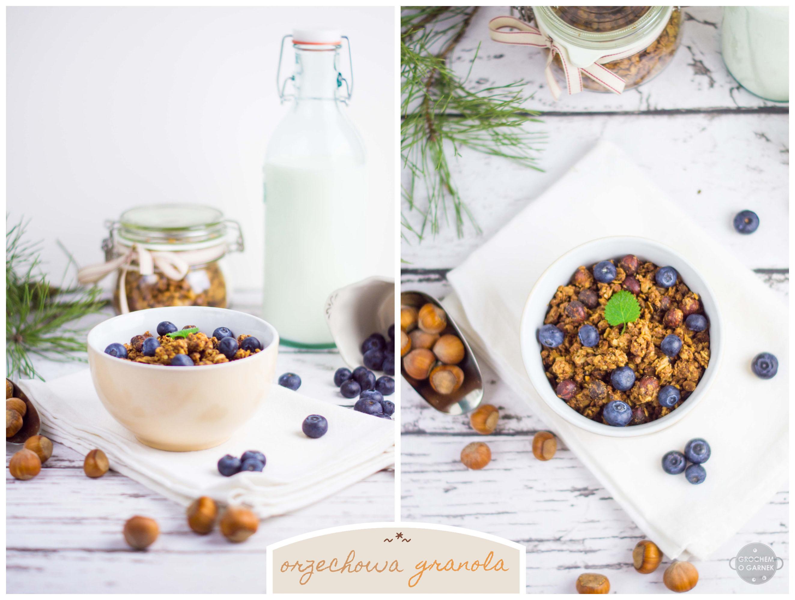 granola-orzechowaCollage-kolor