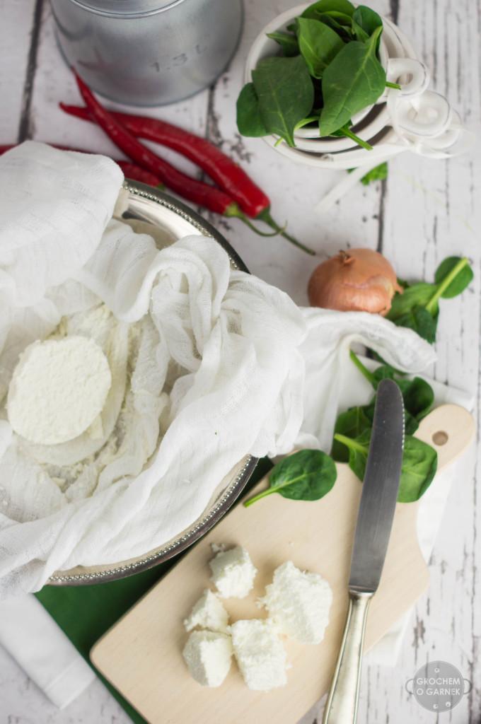 przepis na domowy ser indyjski paneer